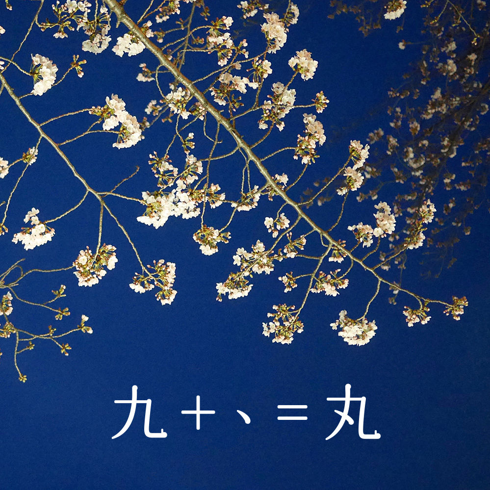 2017夜桜01