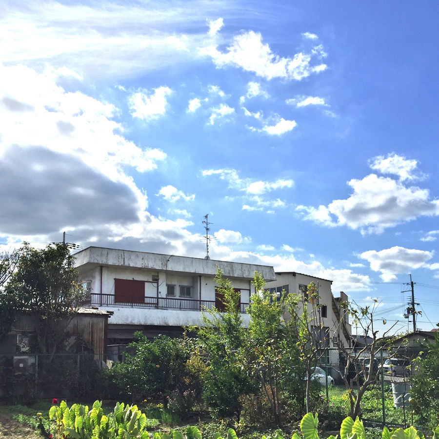 沖縄みたい